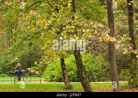 Germany, Bavaria, Munich, Englischer Garten Park, visitors, fall - Stock Photo