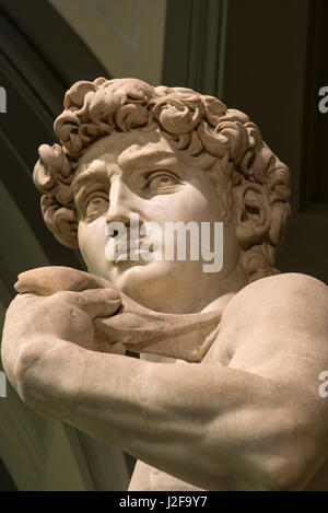 Europe, Italy, Florence. Michelangelo David in Accademia Gallery. - Stock Photo