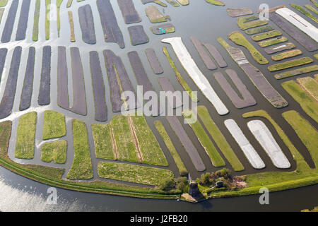 Windmill and Polder or re-claimed lands, North Holland, Netherlands - Stock Photo