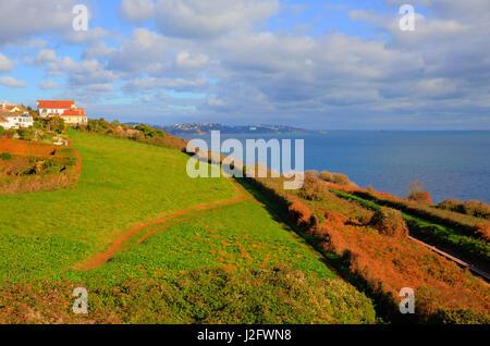 South west coast path near Torquay Devon above Saturn Cove - Stock Photo