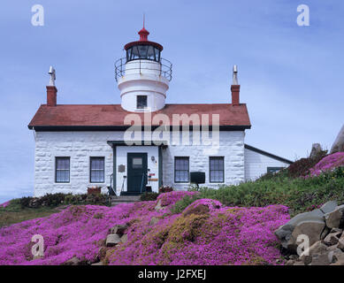 CA, Crescent City, Battery Point Lighthouse, with Ice Plant in full bloom, built in 1856 - Stock Photo