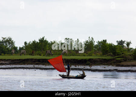 A sail boat on the Pasur River in Bagerhat, Bangladesh. - Stock Photo