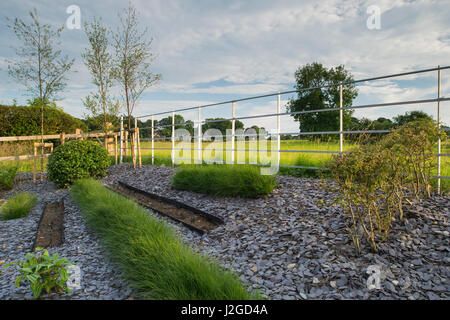 Beautiful landscaped, private garden (contemporary design, shrubs & grasses in lines on raised border) adjoining - Stock Photo