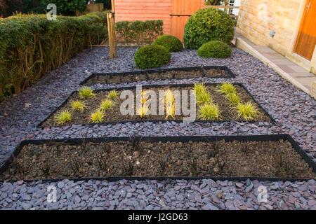 Beautiful, private garden, England, GB, UK. Stylish, contemporary design, landscaping, new planting (grasses) sunken - Stock Photo