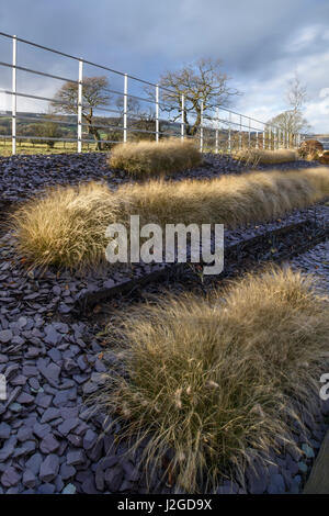 Winter sun on beautiful, private garden, Yorkshire, England, UK -  contemporary design & landscaping, slate chippings - Stock Photo