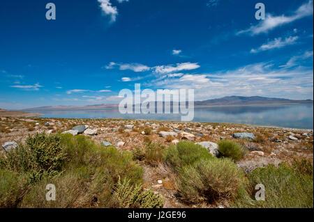 USA, Nevada, Hawthorne, Walker Lake and Gillis Mountain Range - Stock Photo
