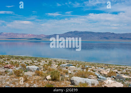 USA, Nevada, Hawthorne, Walker Lake and Gillis Mountain Range (Large format sizes available) - Stock Photo