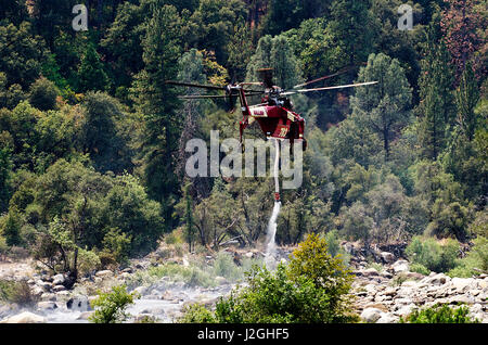 USA, California, El Portal, S-64 Skycrane Helicopter taking water from Merced River to fight forest fire - Stock Photo