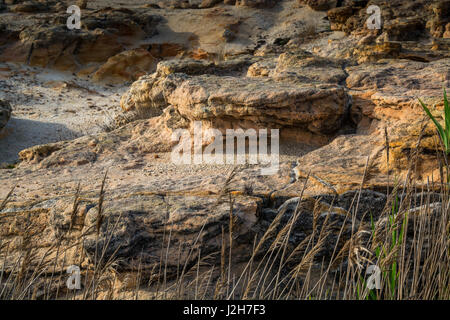 small rock formation in brown tones - Stock Photo