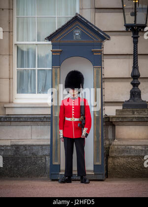 Sentry of the Grenadier Guards posted outside Buckingham Palace, London, UK. - Stock Photo