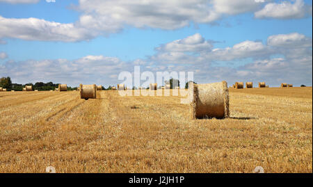 An English Rural Landscape with field of golden wheat stubble and round hay bales - Stock Photo