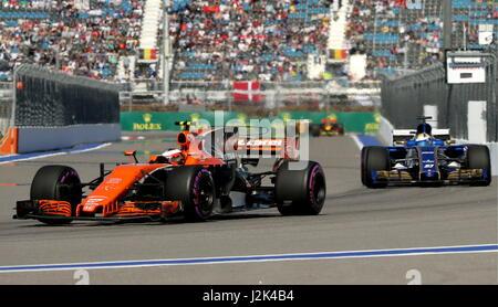 Sochi, Russia. 29th Apr, 2017. McLaren F1 Team driver Stoffel Vandoorne (L) of Belgium and Sauber F1 Team driver - Stock Photo
