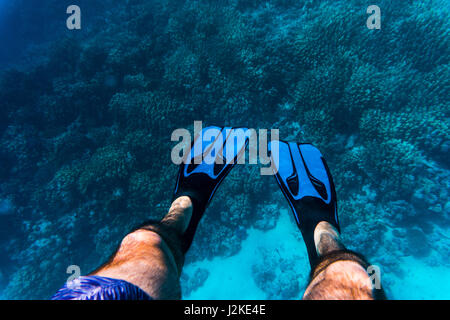 Underwater photo of man legs with fins at shallow water on beach - Stock Photo