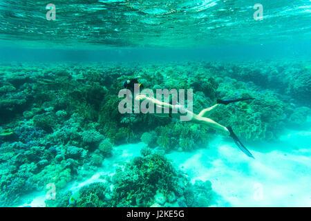 Beautiful Woman snorkeler explores coral reef - Stock Photo