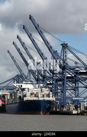 Felixtowe, Suffolk, 28 Apr 2017 - Port of Felixtowe container depot - Stock Photo