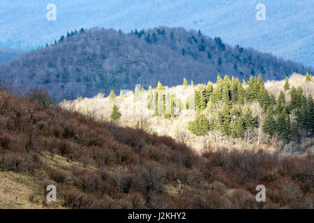 Views from Art Loeb Trail near Black Balsam Knob - Blue Ridge Parkway, North Carolina, USA - Stock Photo