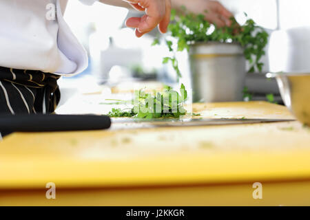 Chef in hotel or restaurant kitchen cooking - Stock Photo