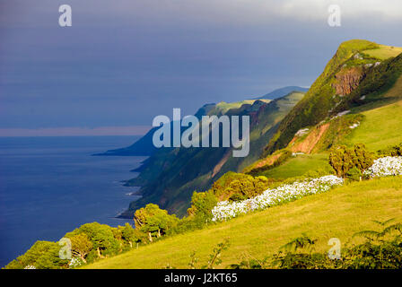 Afternoon view over cliffs of Sao Jorge island, Azores - Stock Photo
