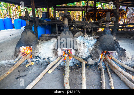 Traditional distillery on the island of Flores in Indonesia, brewing liquid extracted from palm tree to make spirits - Stock Photo