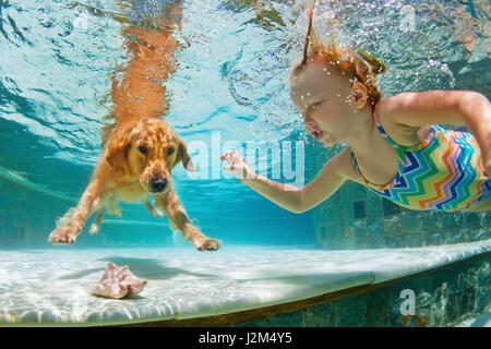 Underwater action. Smiley child play with fun, training golden retriever puppy in swimming pool - jump and dive. - Stock Photo