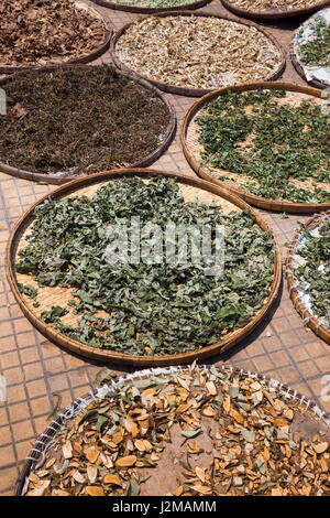 Vietnam, Mekong Delta, Sa Dec, outdoor drying herbs - Stock Photo
