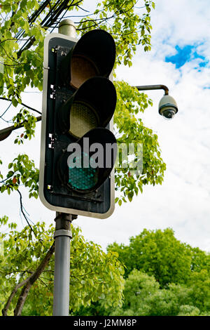 Green light of traffic light on the pole with the tree and blue sky - Stock Photo