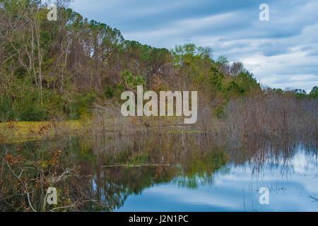 Pinckney Island National Wildlife Refuge, Hilton Head, South Carolina, USA - Stock Photo