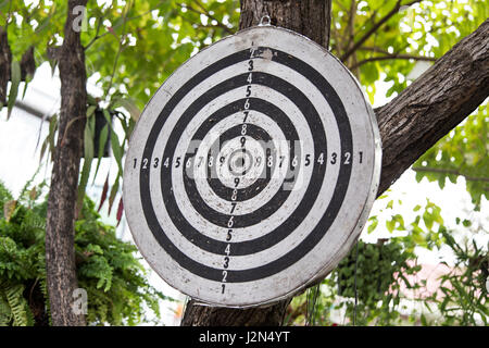Old dart board hanging on a tree, showing sign of well used - Stock Photo