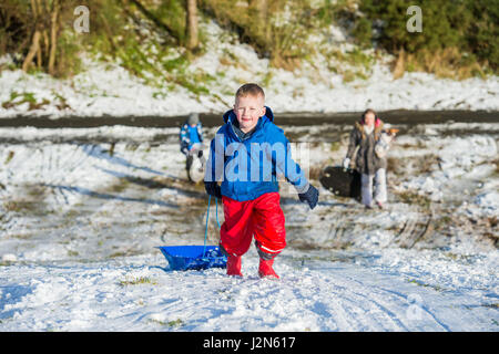 Photographer Ian Georgeson, 07921 567360 TJay Barclay (6) sledging in Penicuik - Stock Photo