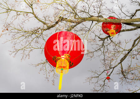 Red lanterns at Chinese New Year Celebration, Dr Sun-Yat Sen Classical Garden, Chinatown, Vancouver, British Columbia, - Stock Photo