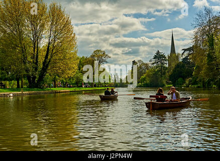 Two couples in rowing boats on the River Avon in Stratford upon Avon, Warwickshire, with Holy Trinity church spire - Stock Photo