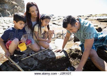 Latino family playing on craggy sunny beach - Stock Photo