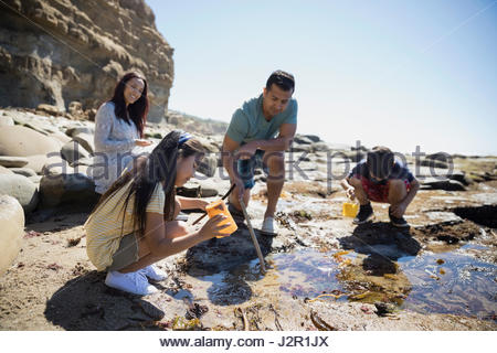 Latino family at tide pool on sunny craggy beach - Stock Photo