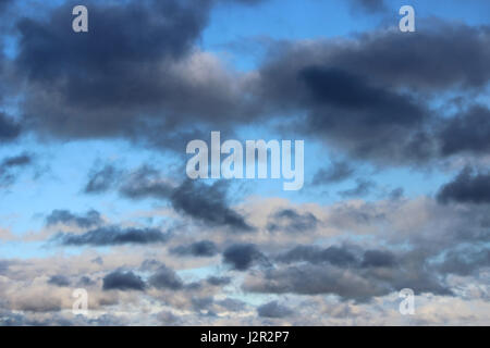 Huge white cumulus clouds against blue sky in spring - Stock Photo