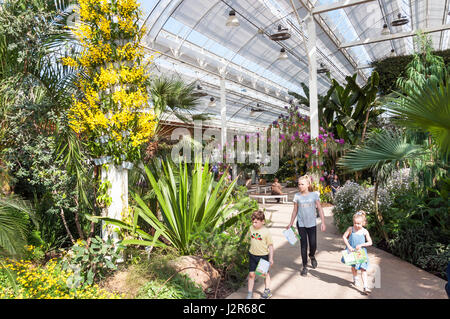 Children in The Glasshouse at The Royal Horticultural Society's garden at Wisley, Wisley, Surrey, England, United - Stock Photo