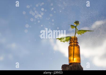Natural remedies - medicines - Stock Photo