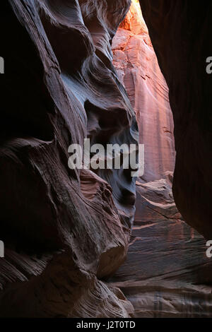 The beauty of Buckskin Gulch, located in southern Utah, it is one of the longest slot canyons in the world. - Stock Photo
