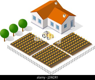 Houses and gardens - Stock Photo