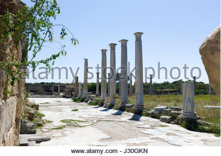 Marble columns standing in the ruined ancient city of Salamis, north Cyprus - Stock Photo
