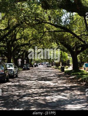 Louisiana, USA. 1st May, 2017. Sunny in Louisiana. Weather. New Orleans, Louisiana, USA. Brent Clark/Alamy Live - Stock Photo