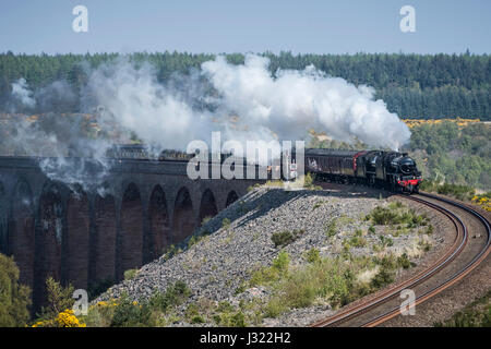 The Great Britain X Steam Tour enjoys clear blue skies as it crosses Culloden Viaduct on the Highland Main Line - Stock Photo