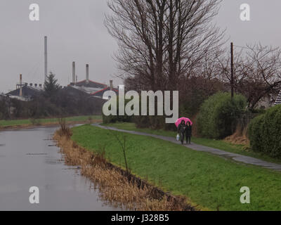 Raining couple with pink umbrella om the tow path on the Forth and Clyde Canal - Stock Photo