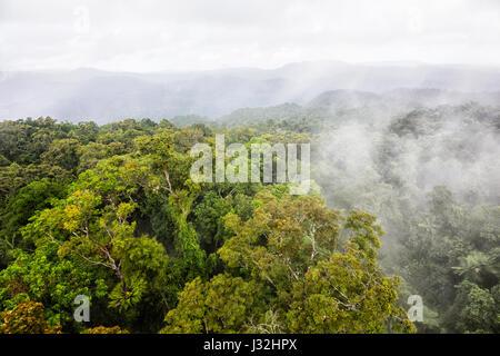 Clouds over pristine tropical rainforest canopy near Cairns, Far North Queensland, FNQ, QLD, Australia - Stock Photo