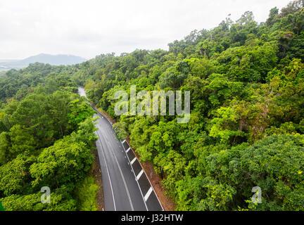 Road through pristine tropical rainforest near Cairns, Far North Queensland, FNQ, QLD, Australia - Stock Photo