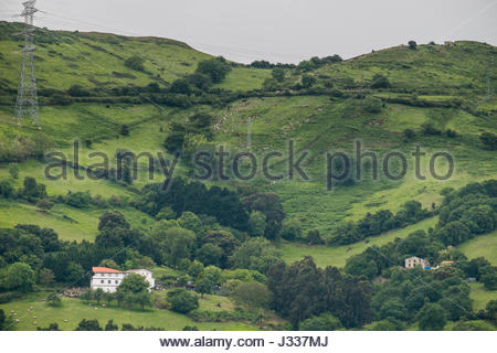 Lush green hills above the Port of Bilbao, Biscay, Basque Country, Spain - Stock Photo