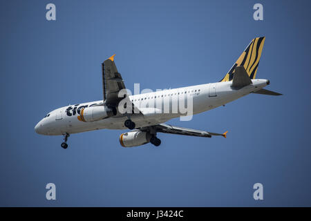 CHIANG MAI, THAILAND -APRIL 29 2017: 9V-TAF Airbus A320-200 of Tiger Air. Landing to Chiangmai airport from Singapore. - Stock Photo