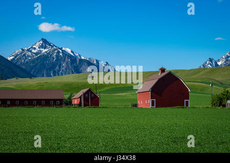 Red barn near the Wallowa Mountains in Oregon - Stock Photo