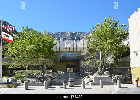 Pines Cafe Palm Springs Ca