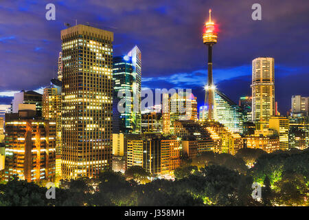 Cityline of Sydney CBD over tree crowns of Hyde Park at sunset when city towers are brightly illuminated against dark blue sky.