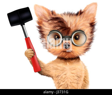 Funny dog with hammer Isolated on white - Stock Photo